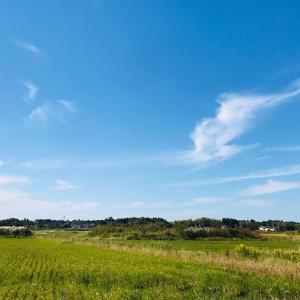 広ーい空と雲 日々 気になります。さわやかな秋の日、青空に、薄雲。