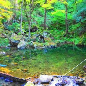 三段峡、紅葉散策(≧▽≦)♫猿飛、二段滝!
