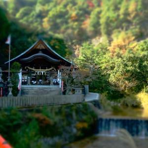 秋深まる妹背の滝(*^▽^*)!
