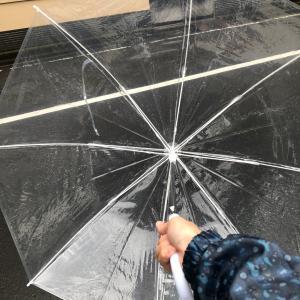 傘はなくすもの
