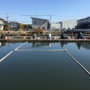 ぶらり茨木新池