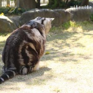 苦手なあの子( ´艸`)