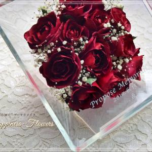 プロポーズの深紅バラ