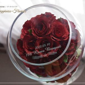 咲き続ける真っ赤なバラ