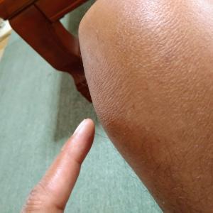 太刀魚・シーバス そして謎の膝痛