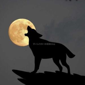 2021年最初の1月の満月「ウルフムーン(狼月)」を見るなら1月29日(金)の夜!