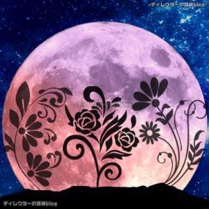 """2021年5月26日の皆既月食は、今年最大のスーパームーン! """"フラワームーン(花月)""""を皆で一緒に楽しもう!"""
