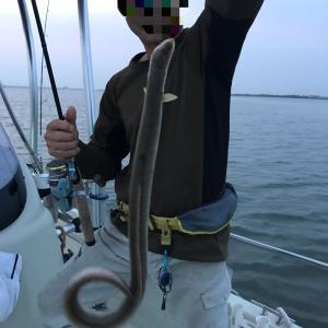 大潮でーす。ウナギ釣り
