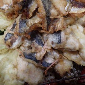■【豊浜で釣れた魚を食す】