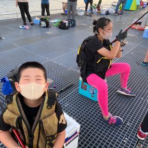 ■【2020年 夏】豊浜釣り桟橋 釣り情報