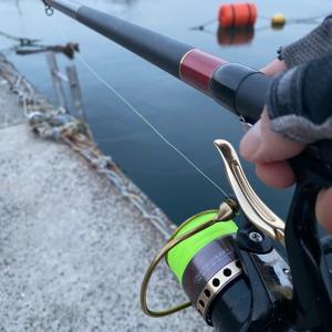 ■【豊浜釣り桟橋】夜明け前に電気ウキ釣り