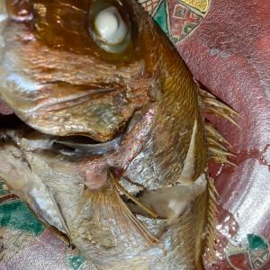 ■【魚太郎】アフター豊浜漁港