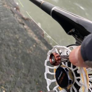 ■【昼間の調査】&釣り具屋ハシゴ