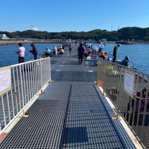 ■【豊浜釣り桟橋】2021年9月27日 情報