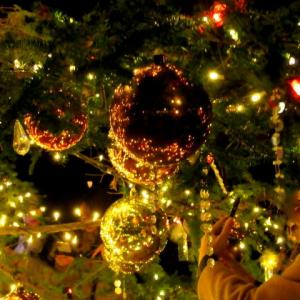 ②星降る森のクリスマス・2019 * 軽井沢高原教会・クリスマスキャンドルナイト☆