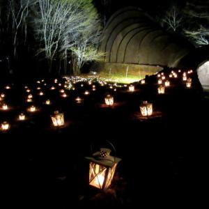 ③星降る森のクリスマス・2019 * 軽井沢高原教会・石の教会ライトアップ♪