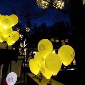 「幸せが灯る街」ハルニレテラスのクリスマス * 幸せのやどりぎ点灯式♪