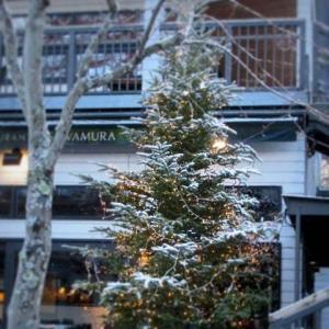 雪景色の旧軽井沢 * ベーカリー&レストラン 沢村~おかしやあした