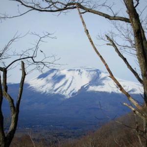 暖かい大寒の日 * 軽井沢駅からのプリンススキー場