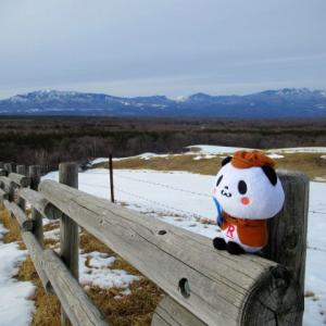 北軽井沢・浅間牧場の雪景色