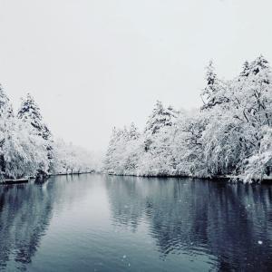 上雪の雲場池 * コロナなんて忘れて深呼吸♪