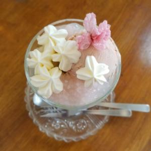 Cafe Patra カフェパトラ * 4月の桜パフェ♪ ~ タリアセンも休園中!
