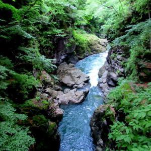 名勝 吾妻峡 * 梅雨の晴れ間、緑の渓谷に涼む♪