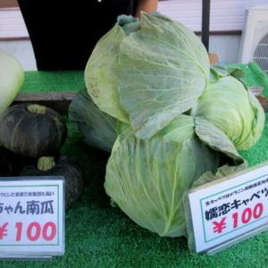 レンタルスキー ナイスワン * 嬬恋の新鮮野菜がお安く買えます♪