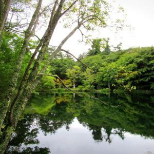 軽井沢の紅葉・9月24日 * 色づき始めた雲場池