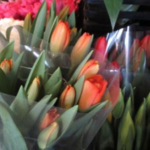 GATE FLOWER FIELD * お花屋さんは春色満載♪