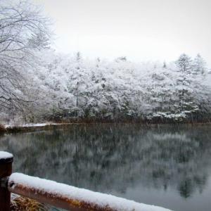 雲場池の雪景色・2021