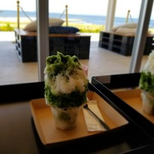 SENNAN LONG PARK * TSUBOICHI TEA PLACE であの「無重力かき氷」を食す♪