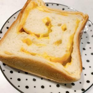 ルミトロン食パンと円山動物園