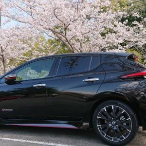 桜満開からの農作業