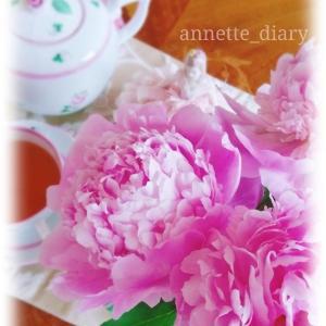 ピンクの芍薬♡朝のティータイム