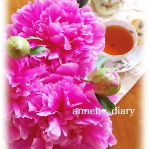 スプレー咲きの芍薬♡ふんわりフェミニン&レースワンピース