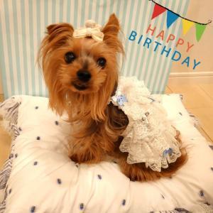 お誕生日プレゼントとケーキは