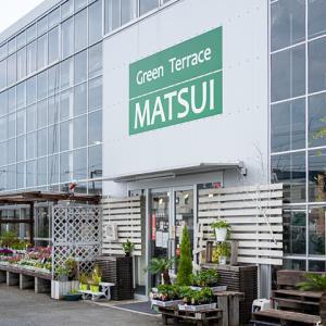 グリーンテラスMATSUI