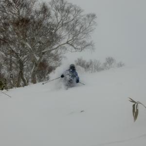 パウダースノー powder snow
