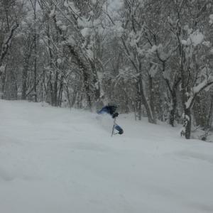 powder snow パウダースノー