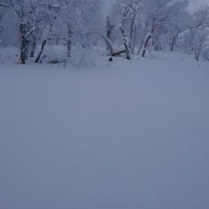 雪 snow 面ツル