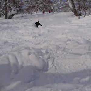 本日の雪 降雪