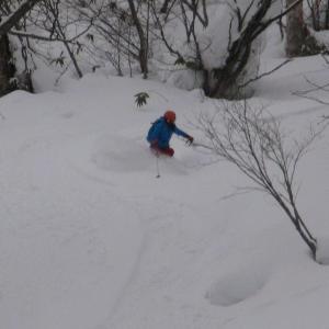 2月前半 スキー