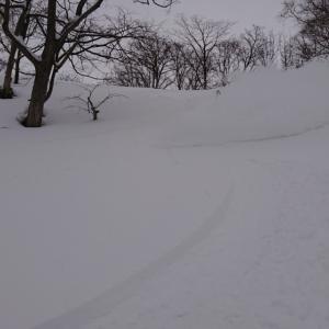 本日の雪 オーバーヘッド