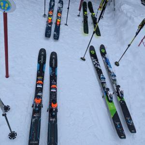 team dynastar skis