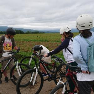 マウンテンバイク・MTBツアー/レンタル、サイクリングコース