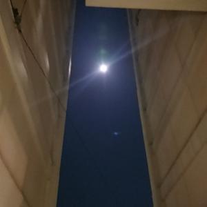 天秤座の満月