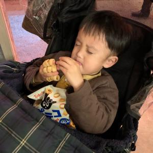 【息子】発達外来&小児科定期検診(3歳9ヶ月)