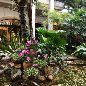 中庭が素敵なホテル@Anantara Siam