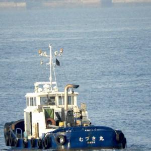 むづき丸 曳船(タグボート) 何時か呉港で見かけた船。
